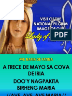Visit of the National Pilgrim Image of Our