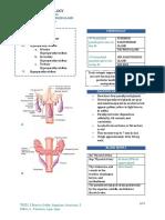 Surgery Parathyroid