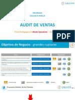 Audit Ventas Presentacion