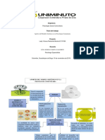 Mapa Mental Modelo Sistemico en Piscologia Comunitaria