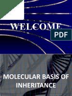 Molecular Basis of Inheritance - Part 1