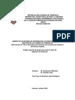 DISEÑO DE UN SISTEMA DE INFORMACIÓN AUTOMATIZADO PARA LA GESTIÓN DE LOS CONSEJOS COMUNALES