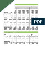 Esquema de Estados Financieros proyecto pecuario