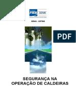 Conteudo Seguranca Operacao Caldeiras Veracel