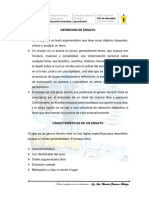 Guia de Ensayo.pdf