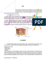 Guia Microblading PDF