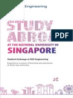NUS Engineering SEP Brochure Final PageView