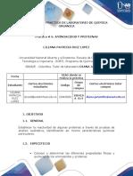 Preinforme 6- Química Orgánica