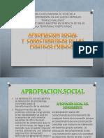 A`PROPACION SOCIAL.pptx