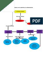 Aspectos sanitarios en la nutrición y la alimentación mapa conceptual.docx