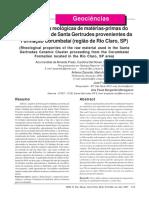 REM 2007.pdf