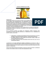 Accion_de_la_bromelina.docx