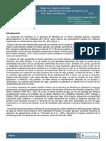 Inta Informe Riego en Cultivos Horticolas 0