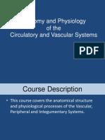 2 Anatomy- IVT