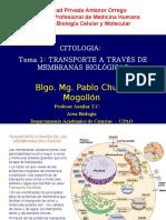 Tema 03.2 Transporte