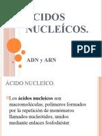 Ácidos nucleícos