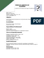 Modelo de Curriculum 4 Preenchido