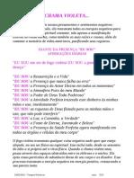 CHAMA_VIOLETA_Resumo1