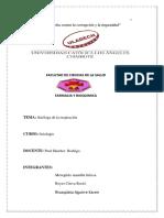 CASO-5 (1).pdf