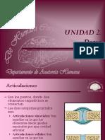 8 Dorso. Articulaciones Intervertebrales