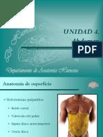 36 Abdomen. Anatomía de Superficie