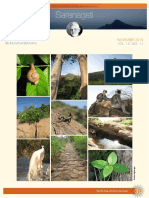 Saranagathi ENewsletter November 2019