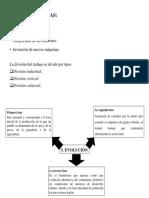 características y evolución.pptx