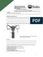 Talller de Estudio Reg Quiz 8 - 2 III Corte. Doc (1)