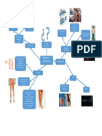 Organizador Gráfico Sindrome  GB (PEÑA DEL AGUILA, ELIEZER).docx