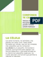 DIAPOSITIVAS COMPONENTE CELULAR.pptx