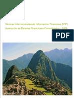 IFRS Perú 2009