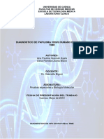 Paper HPV Correcciones