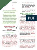 Estudo Pg - 51 - Pergunta 5 Do Bcw