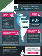 Infografía Gestión de Proyectos