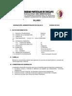 Ciclo6_administracion en Salud II 2011-II