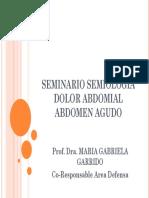 SEMINARIO INTEGRADOR abdomen.pdf