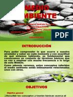 Medio Ambiente - Evaluacion de Impacto Ambiental