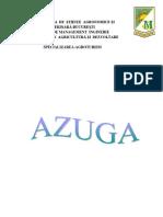 Resurse Agroturistce  - Azuga