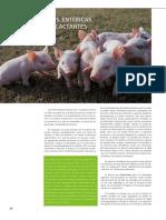 cys_39_enfermedades_lechones_lactantes.pdf