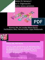 MenaGarcia_Ma.deLourdes_M23S2_Fase3 No.pptx
