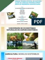 Conversión de Ecosistemas Naturales en Agroecosistemas