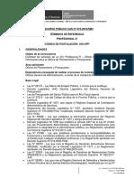 PROFESIONAL IV.pdf