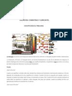 Guia de Estudio Combustibles y Lubricantes