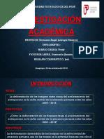 Investigación Académica 2019-Exposicion Primer Grupo