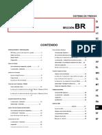 BR.en.es.pdf