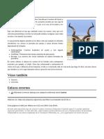 Cuerno wiki.pdf