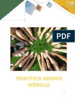 Módulo Practica 409009.pdf