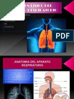 Examen Físico Del AP.respiratorio