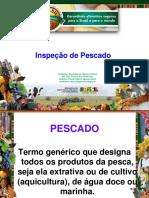 INSPEÇÃO-DE-PESCADO-Cristhiane-Stecanella-de-Oliveira-Cattani.pdf