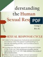 Understanding the Human Sexual Response